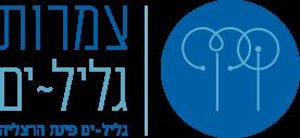 לוגו יצחקי